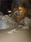 Imagen 6 de la galería de Visita Guiada: La Cueva de Arrikrutz