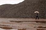 """Cartel del documental """"Mariposas en el hierro"""""""