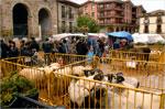 Imagen de la Feria de San Isidro de Antzuola