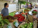 Momento de la Feria de Agricultura Ecológica de Gipuzkoa en Zerain
