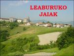 Vista de Leaburu