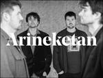Arineketan