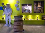 Imagen 3 de la galería de Aikur Erle Museoa
