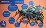 Imagen 6 de la galería de Aikur Erle Museoa