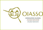 Museo Oiasso