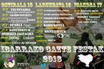 """Cartel de las """"Gazte Festak"""" de Ibarra 2018"""