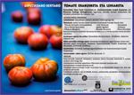 Imagen 1 de la galería de Euskal Jaiak 2018: Exhibición-Concurso de tomates autóctonos de Gipuzkoa