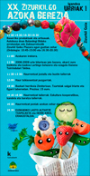 Cartel de la Feria Especial de Zizurkil 2017