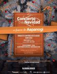 Cartetel del Concierto Benéfico de Navidad a favor de ASPANOGI 2019